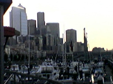 Bell Harbor Marina and Downtown Seattle From Elliott Bay