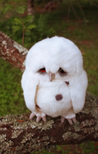 Sad_Owl_3_by_distasty