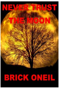 COVER_NEVER_TRUST_THE_MOON